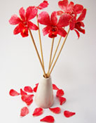 Preserved orchid with stick for home decoration