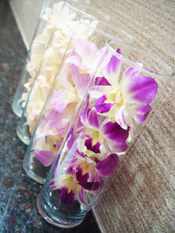 Preserved Orchid in Tube