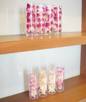 Preserved Dried Orchid Home Decoration